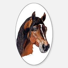 Arabian Horse Oval Decal
