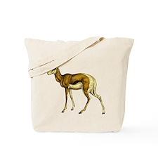 Springbok Antelope Tote Bag