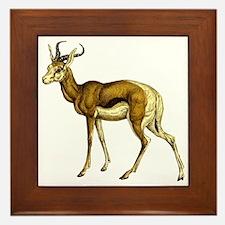Springbok Antelope Framed Tile