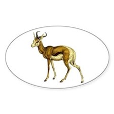 Springbok Antelope Decal