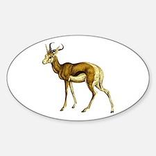Springbok Antelope Sticker (Oval)