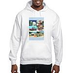 Old Town San Diego Hooded Sweatshirt