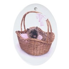 Baby Cairn Terrier Oval Ornament