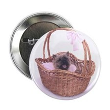 Baby Cairn Terrier Button