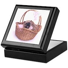 Baby Cairn Terrier Keepsake Box