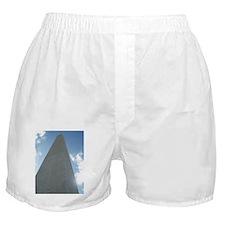 Washington Boxer Shorts