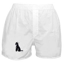 """The Saint"" Boxer Shorts"