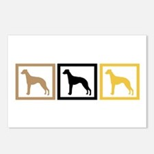 Whippet Squares Postcards (Package of 8)