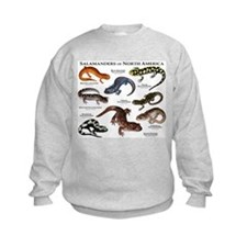 Funny Illustration Sweatshirt