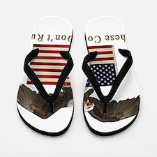 dont_run_eagle3.png Flip Flops