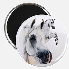Grey Arabian Magnet