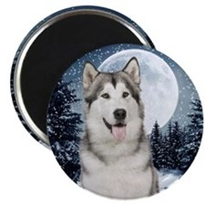 Winter Moon Husky Magnets