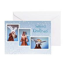 Vizsla Christmas Greeting Cards Cc005