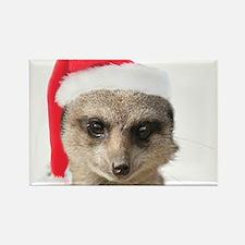 Santa Meerkat Magnets