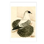 Swallow Pigeon Postcards (Package of 8)