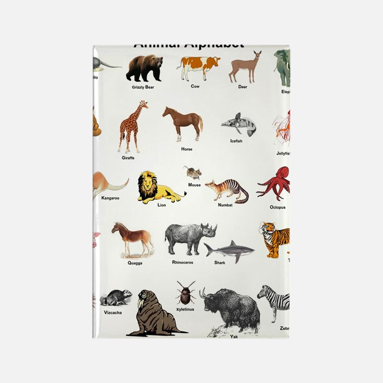Animal pictures alphabe Rectangle Magnet (10 pack)