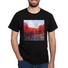 Cute Falling water T-Shirt