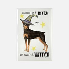 Min Pin Witch Rectangle Magnet