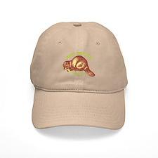 Nice Beaver Hat