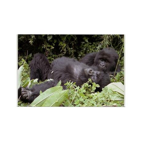 caring gorillas Rectangle Magnet