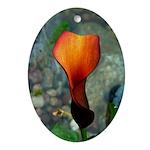 Red Calla Lily Oval Ornament