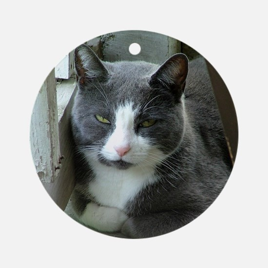Grey and White Cat Ornament (Round)