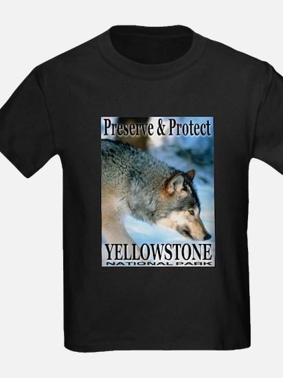 Preserve & Protect YNP Ash Grey T-Shirt