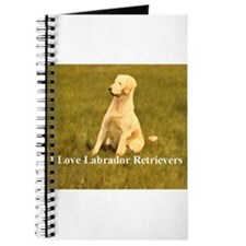 luv labs Journal