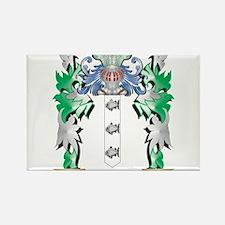 Delaney Coat of Arms (Family Crest) Magnets