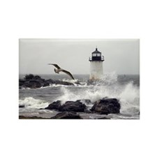 """Beautiful Lighthouses"" Rectangle Magnet"