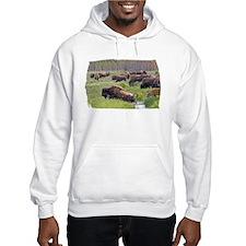 Buffalo Crossing Hoodie