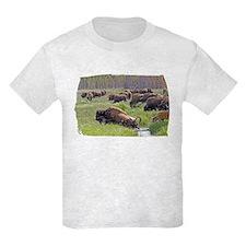 Buffalo Crossing T-Shirt