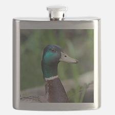 Cute Mallard Flask