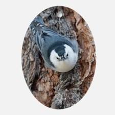 Cute Nuthatch Oval Ornament
