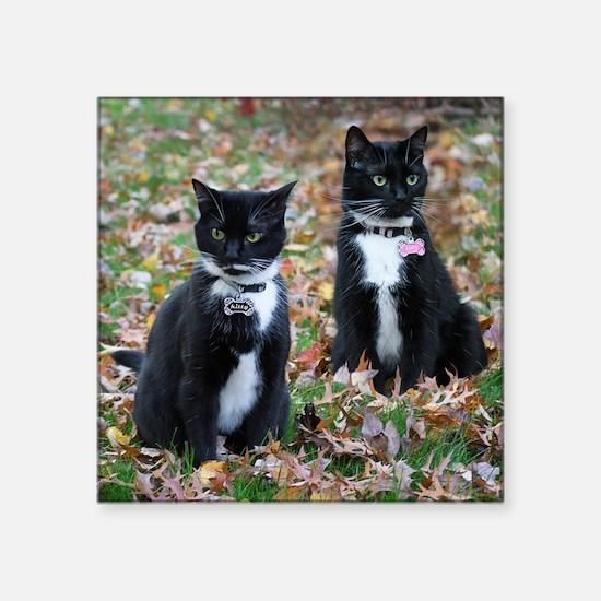 Kitties-sisters calendar 5 Sticker