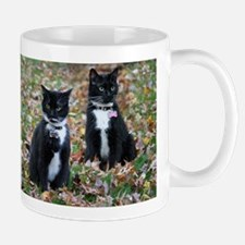 Kitties-sisters calendar 5 Mugs