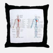 Blood circulatory chart Throw Pillow