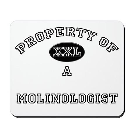 Property of a Molinologist Mousepad