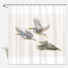 3 pelicans flying Shower Curtain