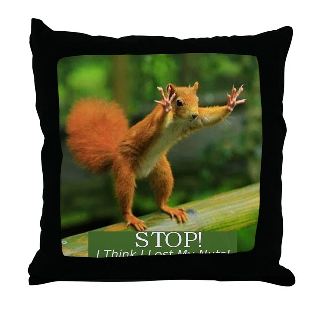 Squirrel Lost His Nuts 2 Throw Pillow By Samee1designs