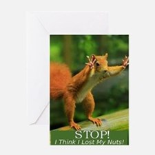 squirrel lost his nuts 2 Greeting Card