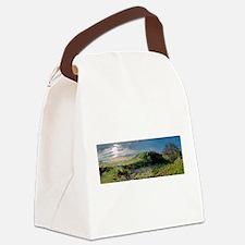 Funny Richard iii Canvas Lunch Bag