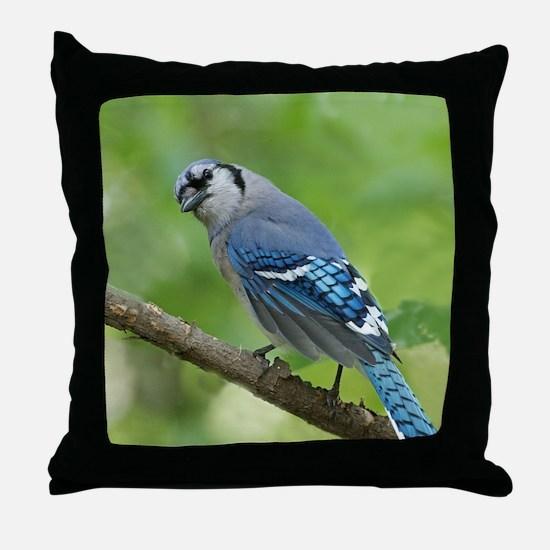 Unique Blue jay Throw Pillow