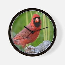 Cute Song bird Wall Clock