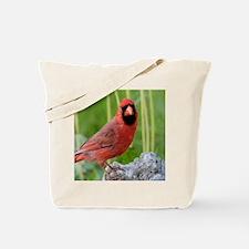 Unique Red bird Tote Bag