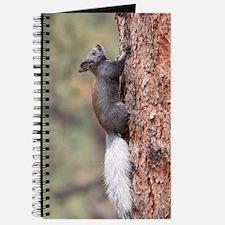Unique White squirrel Journal
