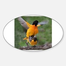 Cool Oriole dad Decal