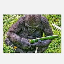Unique Gorilla funny Postcards (Package of 8)