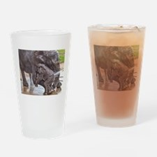BABY ELEPHANT BATH TIME WITH MOTHER Drinking Glass