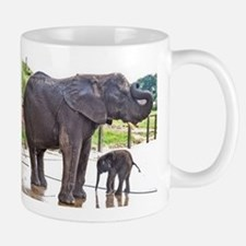 BATH TIME FOR BABY ELEPHANT AND MOTHER Mugs